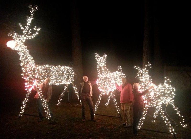 2014 Deck the Halls, Reindeer Laurelbrook