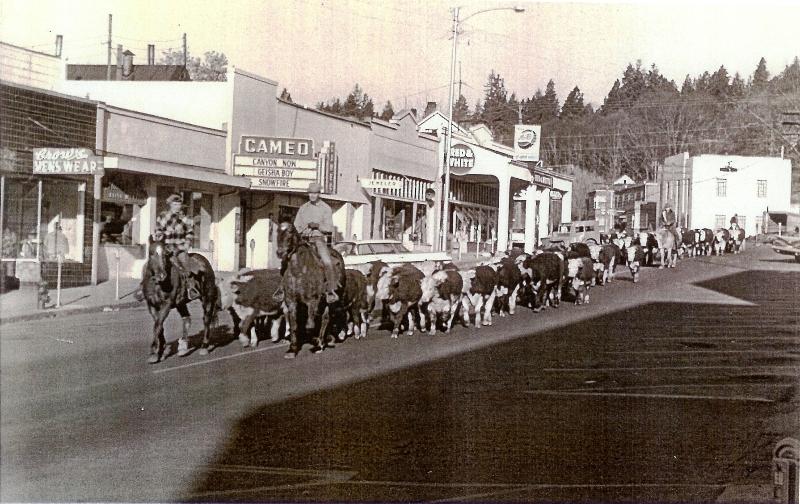 1959 Kreps Cattle Drive on Jewett Blvd