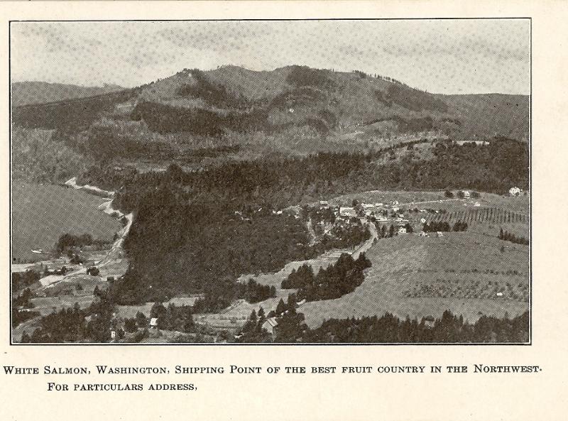 white-salmon-before-1924